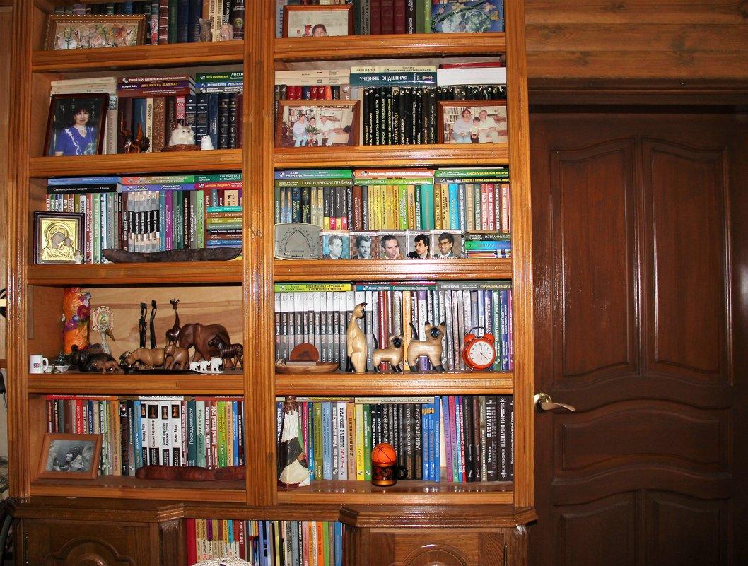 Книжный шкаф :: венера чуйкова - социальная сеть фотокто.