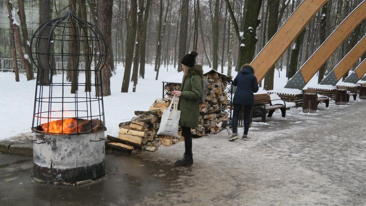 Можно лично разогреть или пожарить на  живом  огне в  парке! - Виталий Селиванов