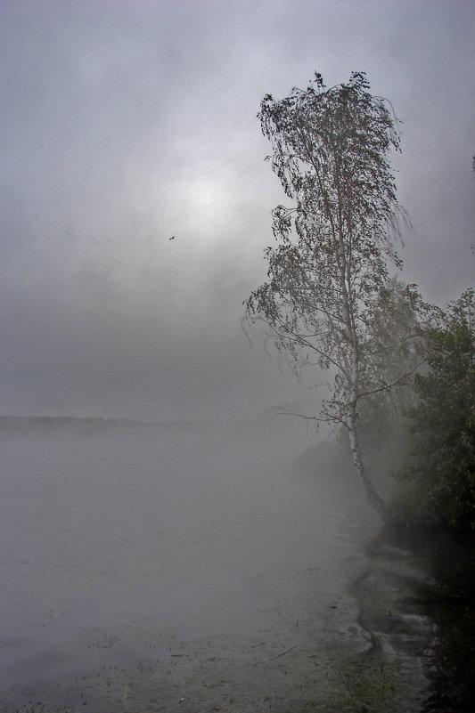Десногорское водохранилище - Aleksandr Ivanov67 Иванов