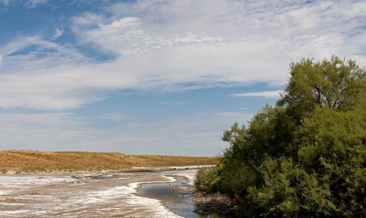 Целебные источники мёртвого озера - Dr. Olver ( ОлегЪ )