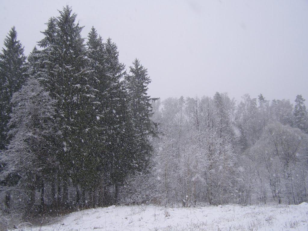 снегопад в апреле - Анна Воробьева