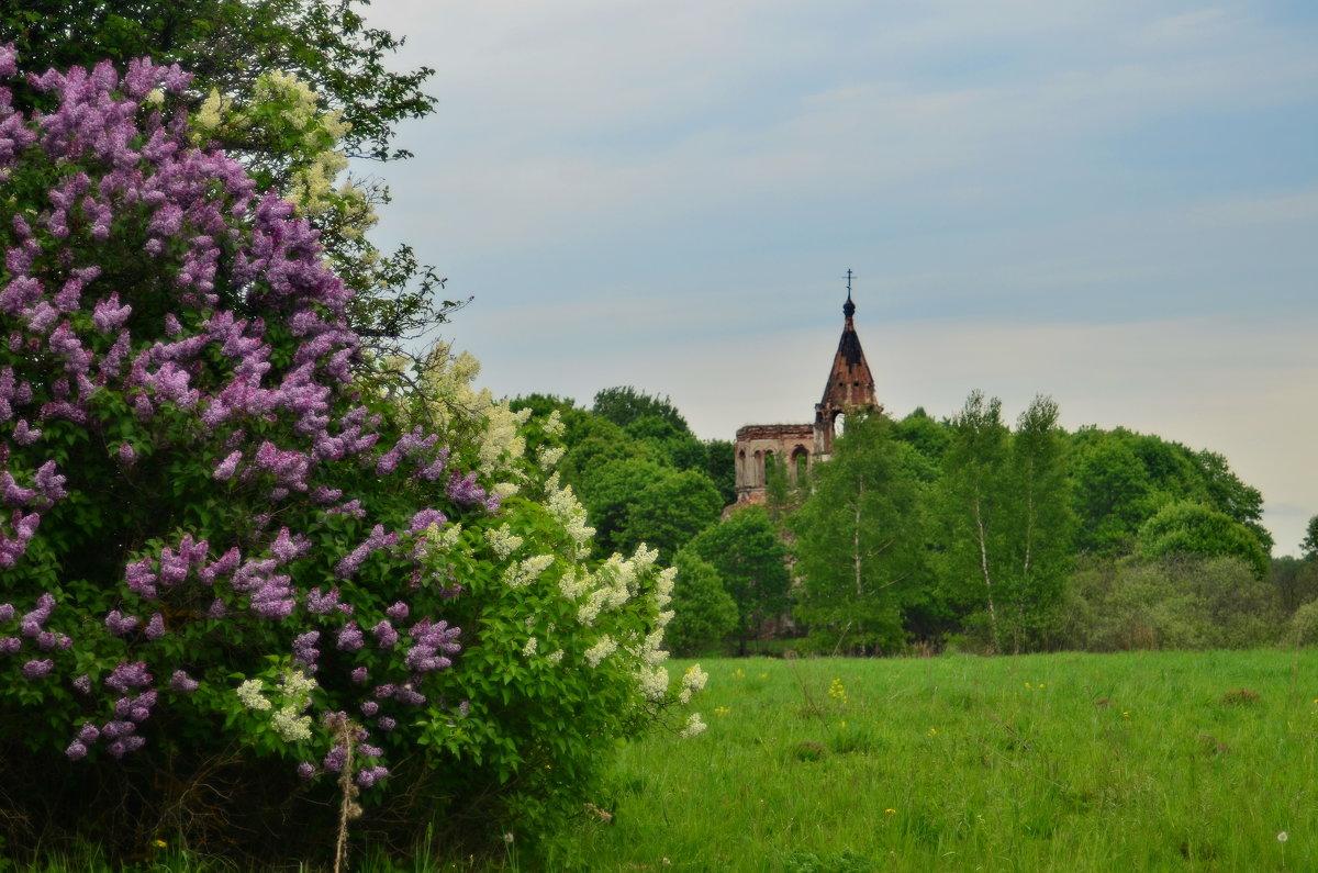 Церковь Троицы Живоночальной - Aleksandr Ivanov67 Иванов
