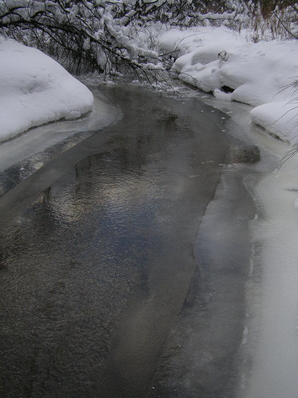 речка Серебрянка в феврале - Анна Воробьева