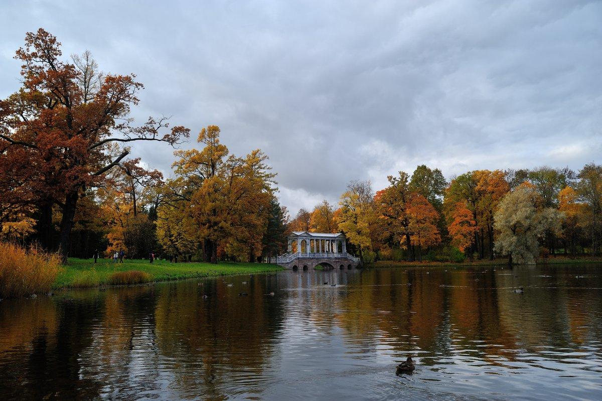В осеннем парке... #7 - Андрей Вестмит