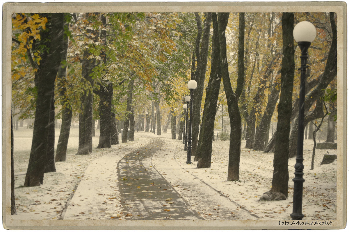 Fotostudio Akolit, Tallinn, Arkadi Baranov  fotograaf. - Аркадий  Баранов Arkadi Baranov