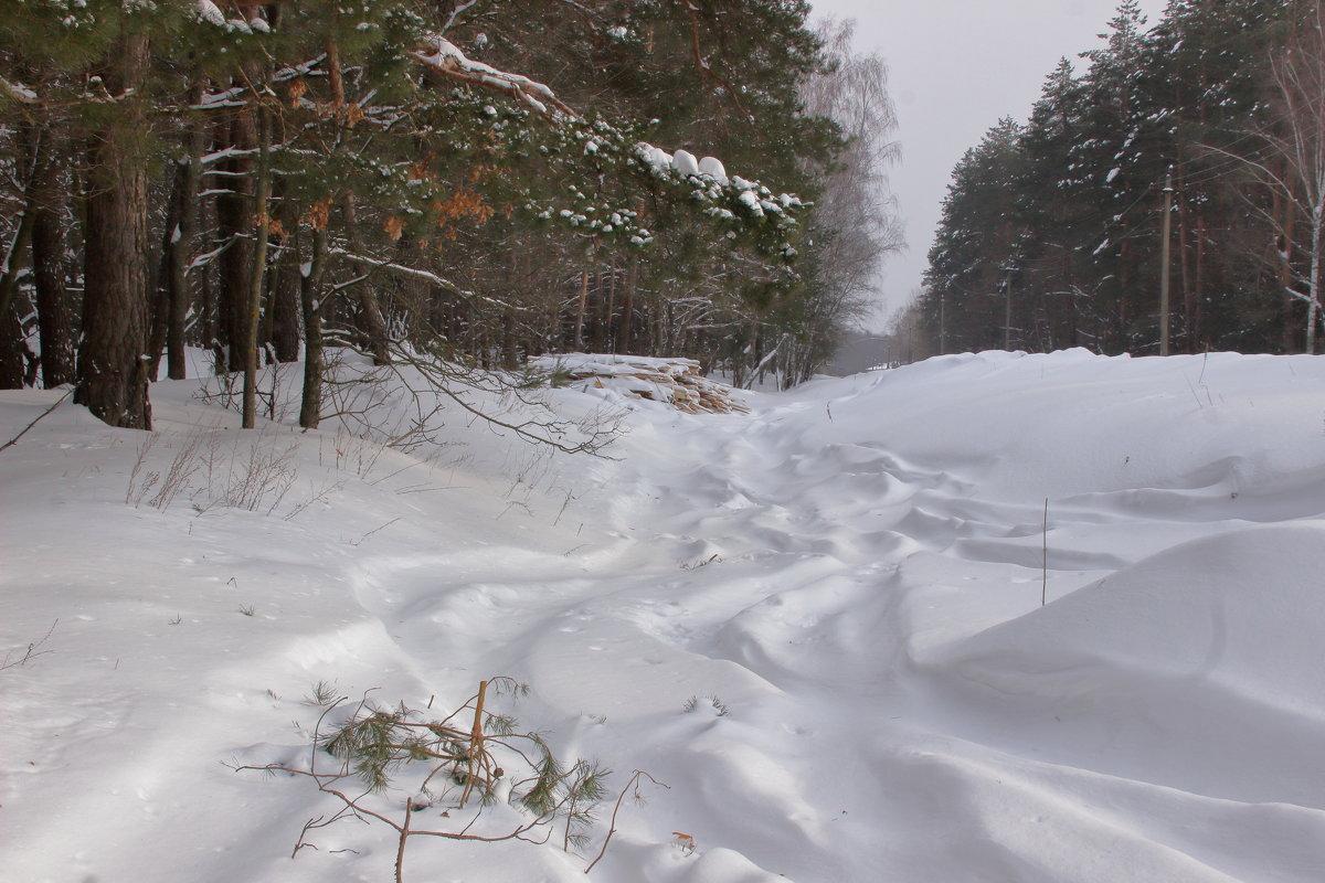 снежные дюны - оксана