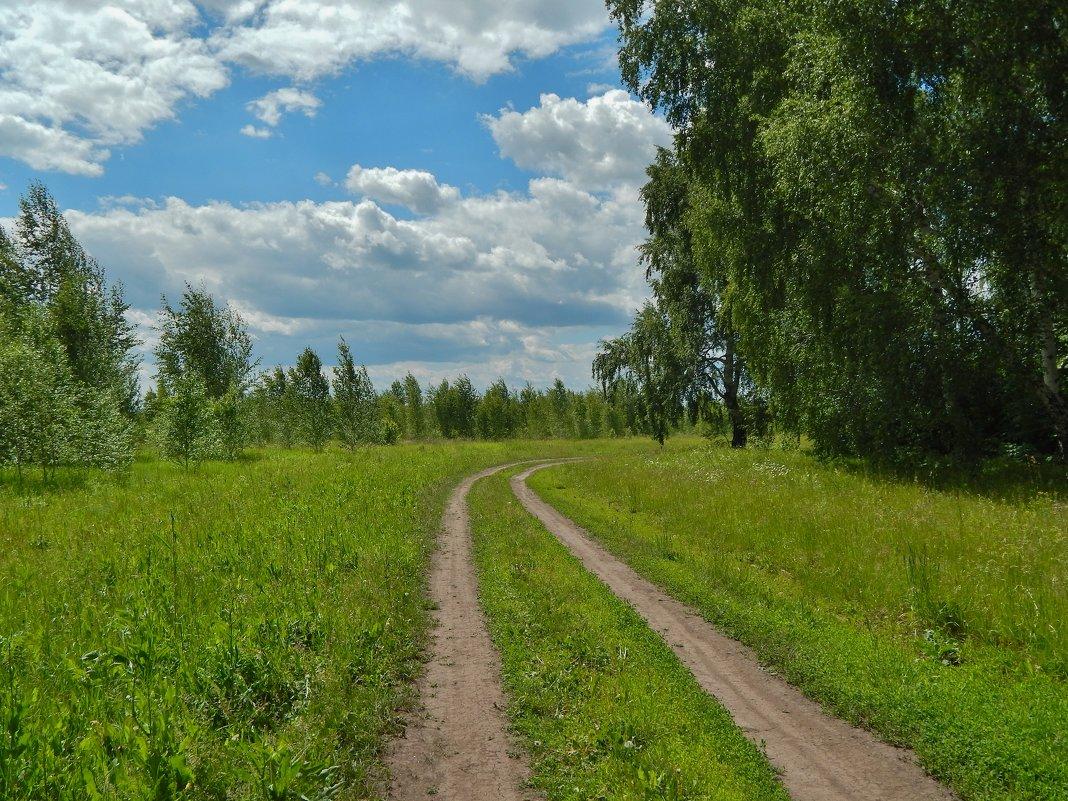 Лесная дорога - Валентина Пирогова