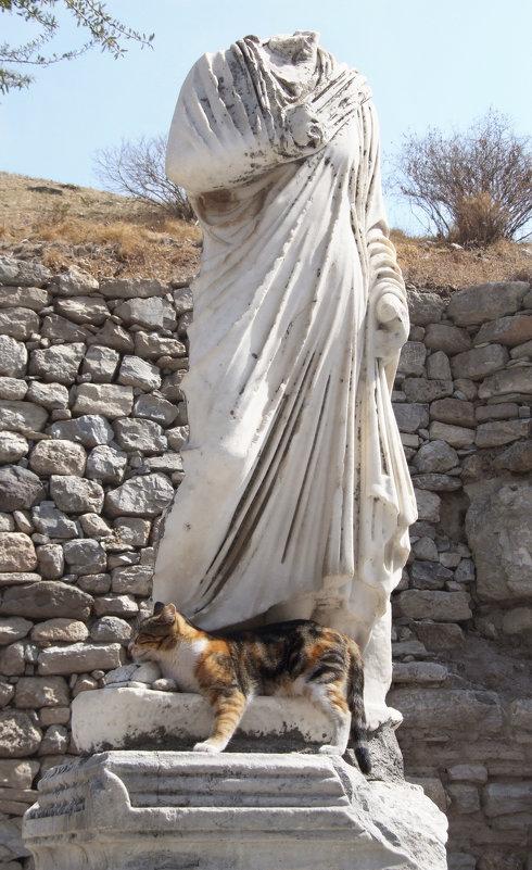 Венера Мяу..лосская - Елена Фёдорова