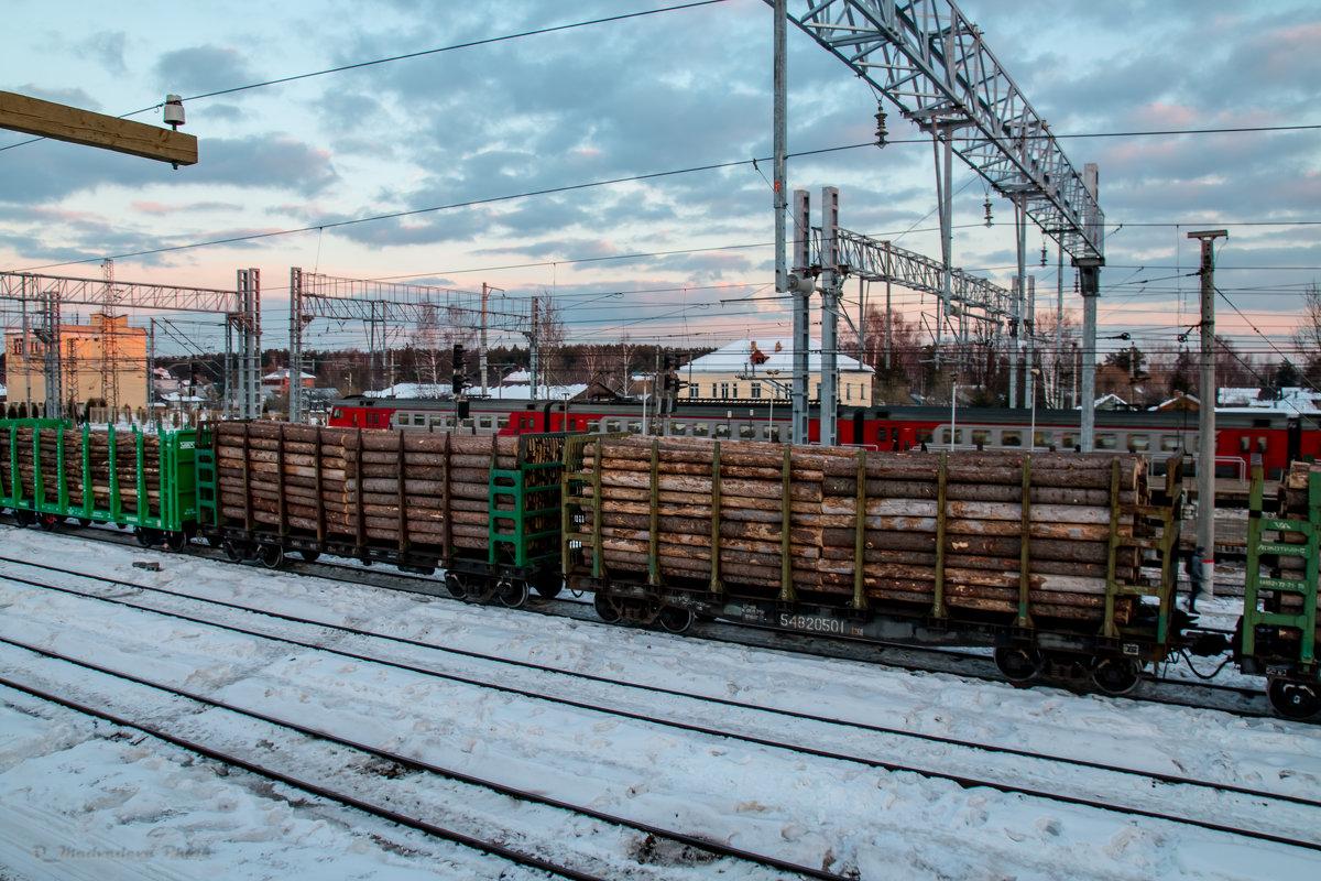 на вокзале - Ольга (Кошкотень) Медведева