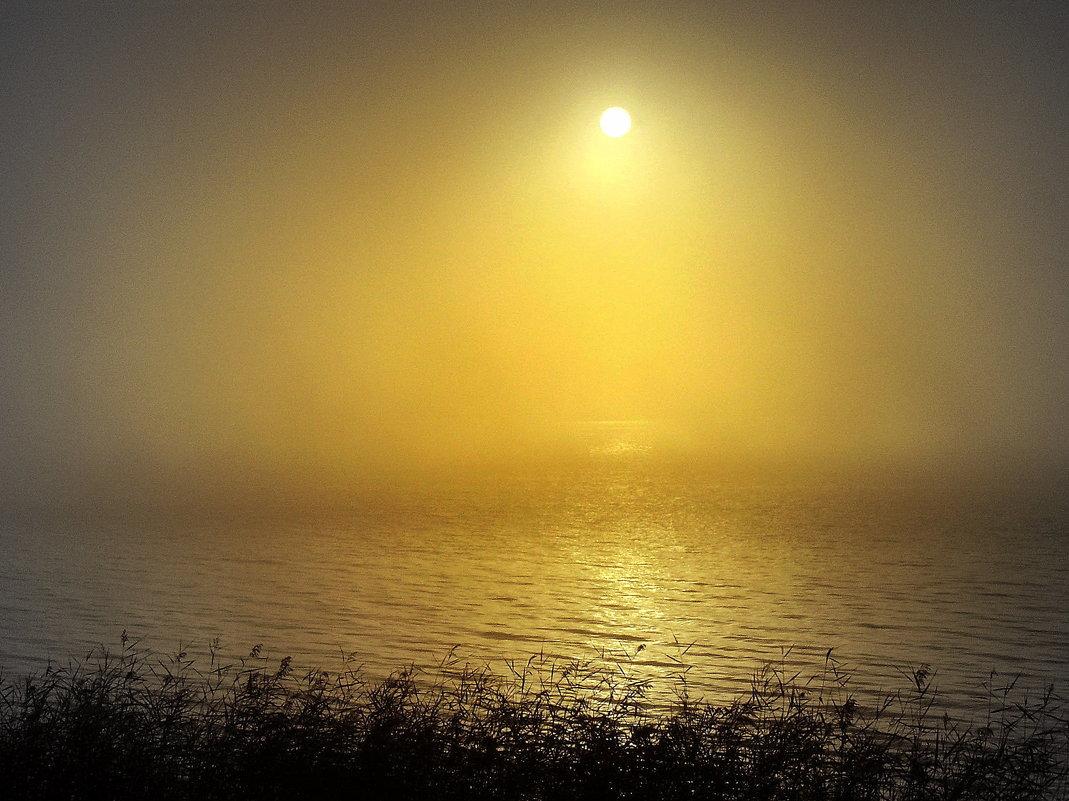 Утро на Обском море - Vlad Сергиевич