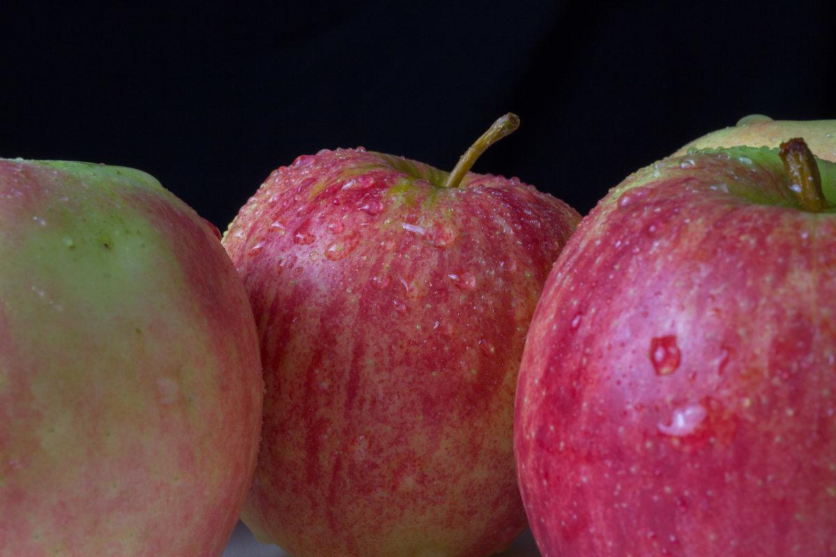 яблочки - Наталья Василькова