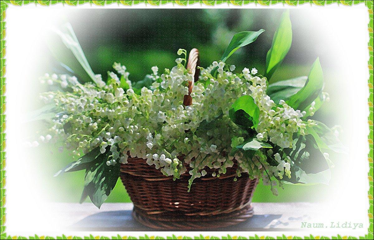В память о Дне Рождения любимого - Лидия (naum.lidiya)