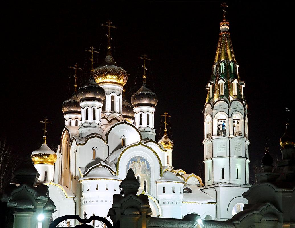 Церковь Александра Невского - Елена Бунак