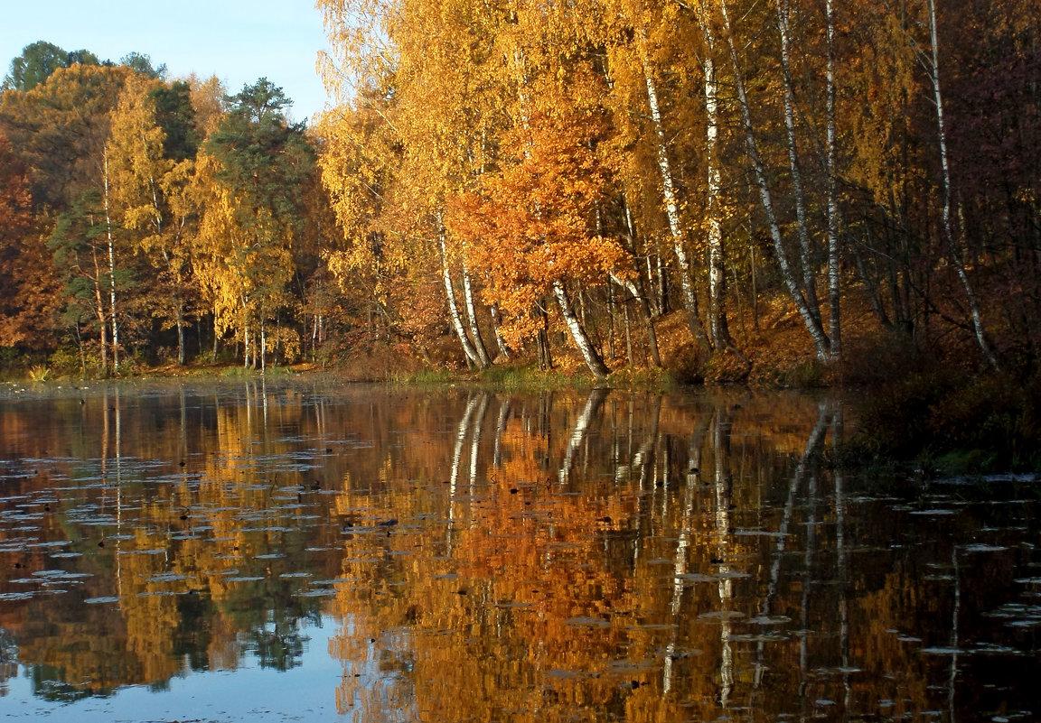 Осенние зеркала..... - Юрий Цыплятников