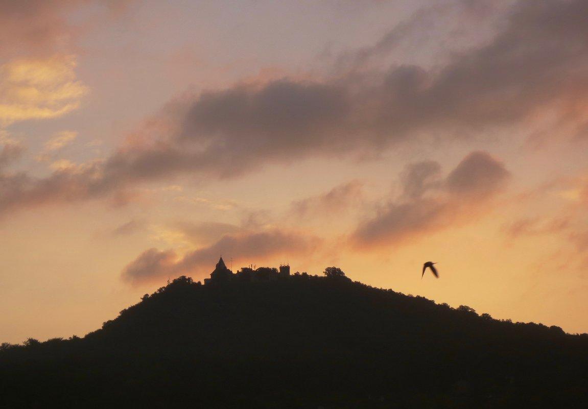 про замок,птицу и восход - Елена
