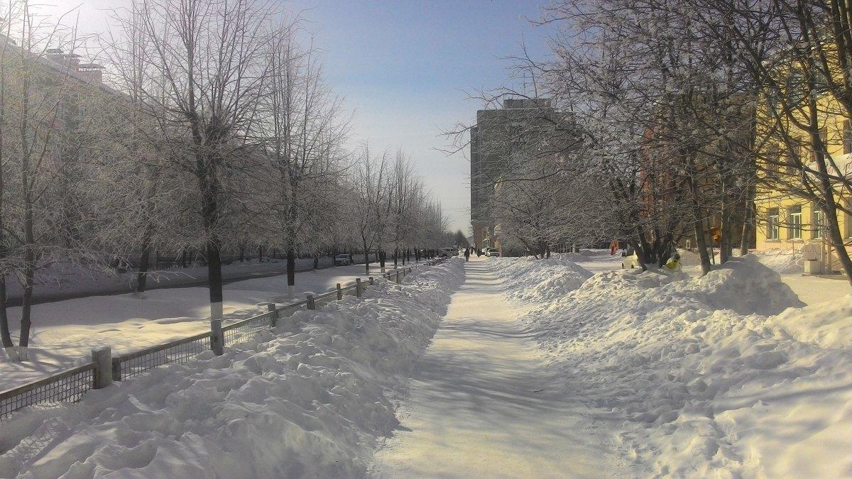 Зима пока не заканчивается - Владимир Звягин