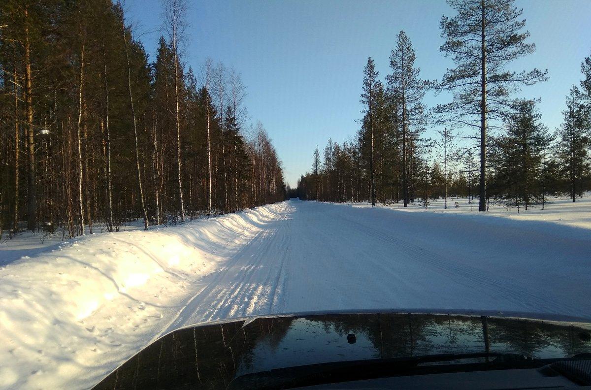 зимник - vg154