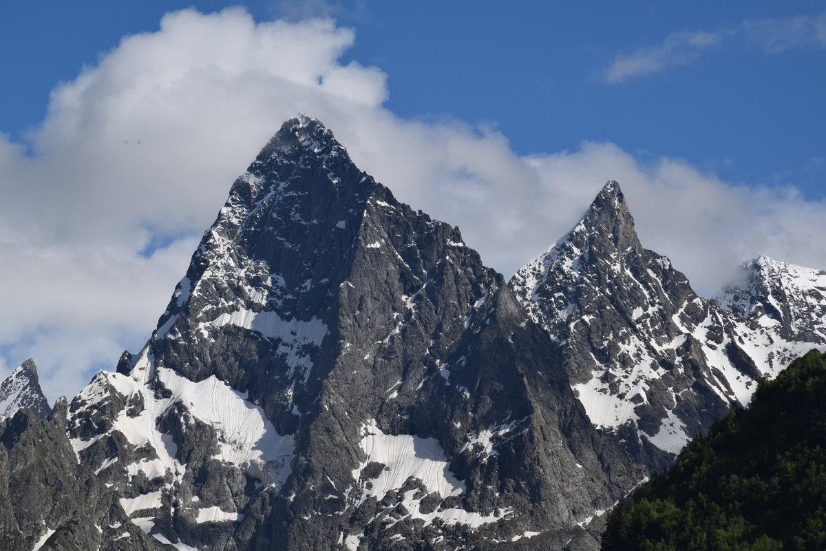 Кавказ. Горы. - Альберт
