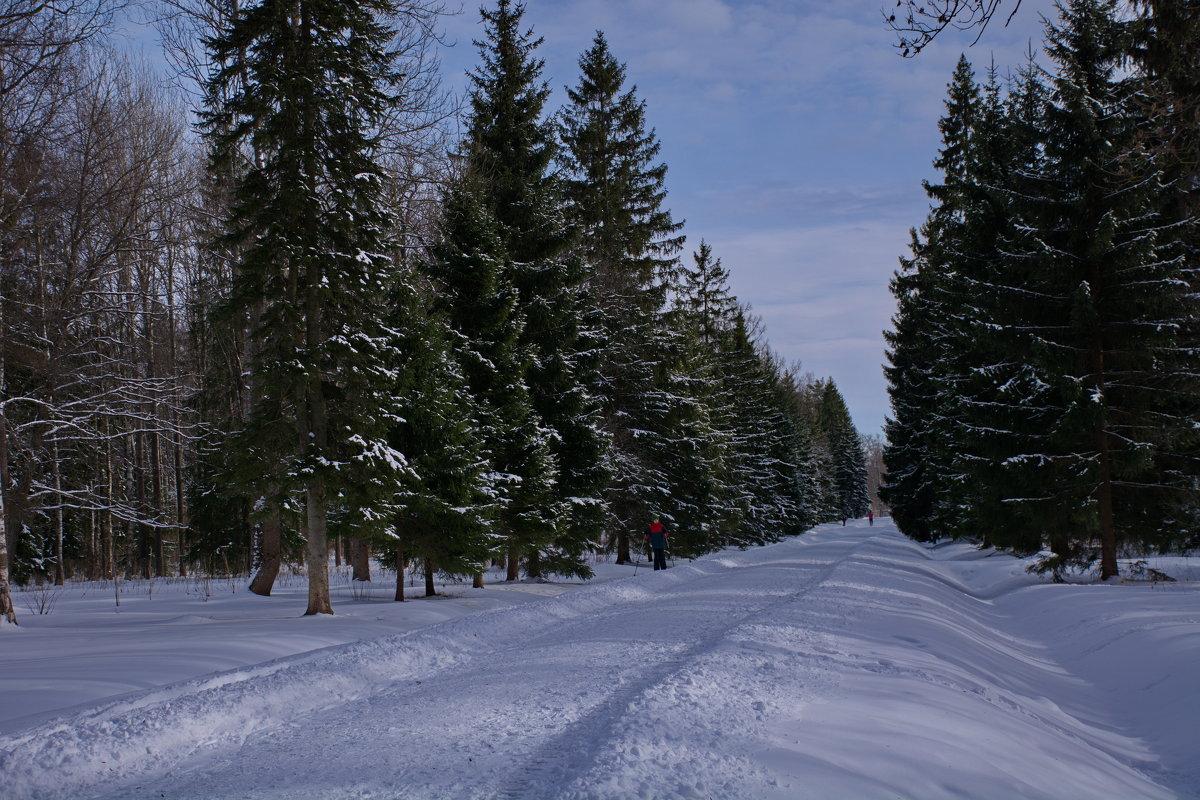 ну еще разок на лыжах.... - Валентина Папилова