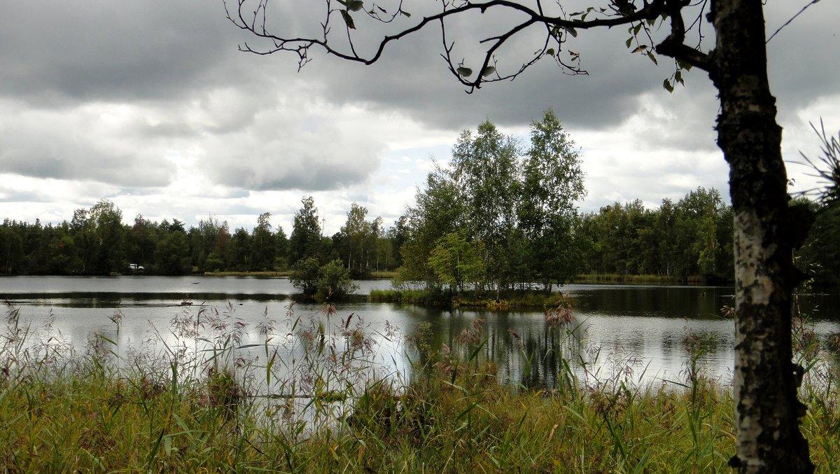 Озеро в  Лепсари - Елена Павлова (Смолова)