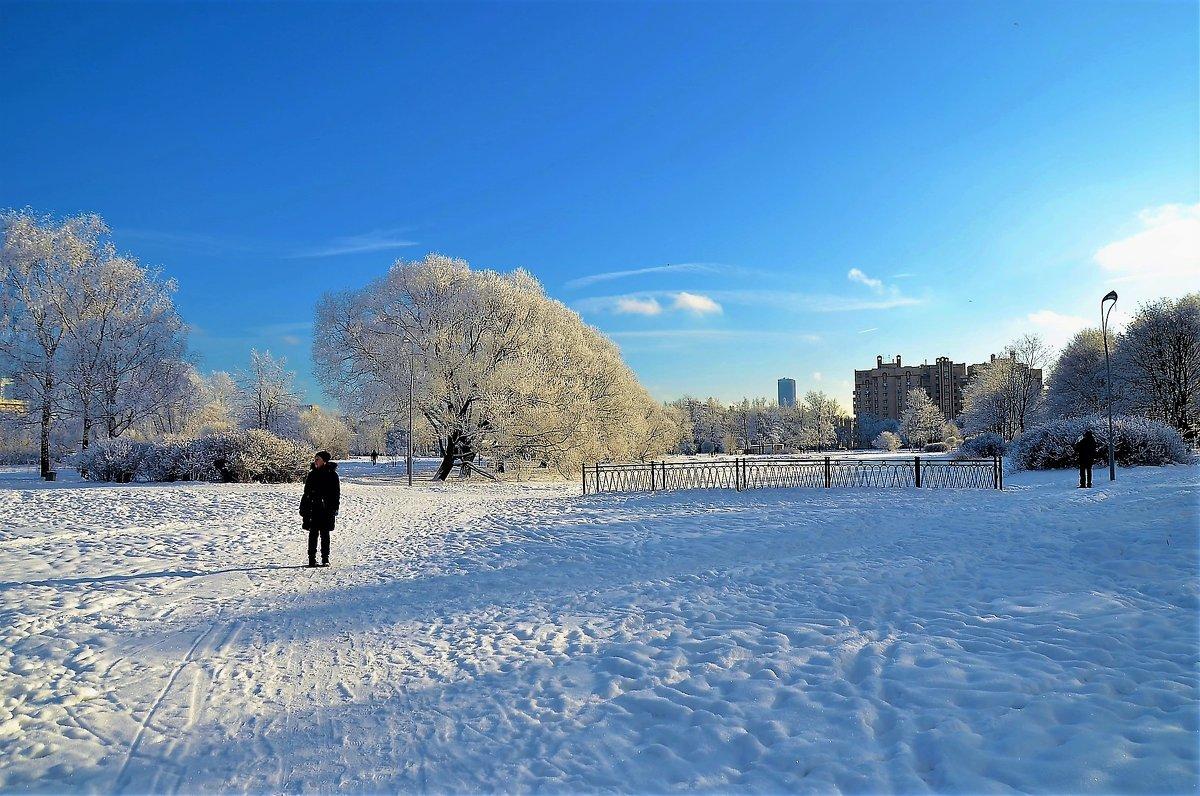Зимний Парк на закате... - Sergey Gordoff