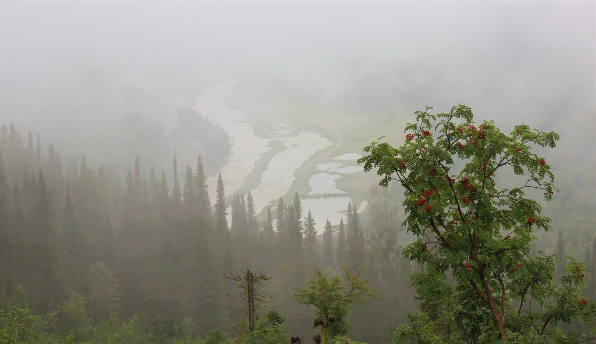Туманное утро августа - Сергей Чиняев