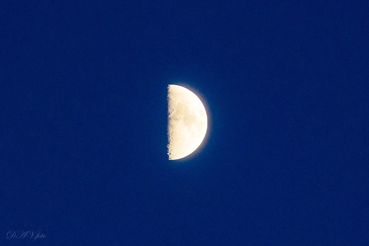 Луна - Анастасия Плужник