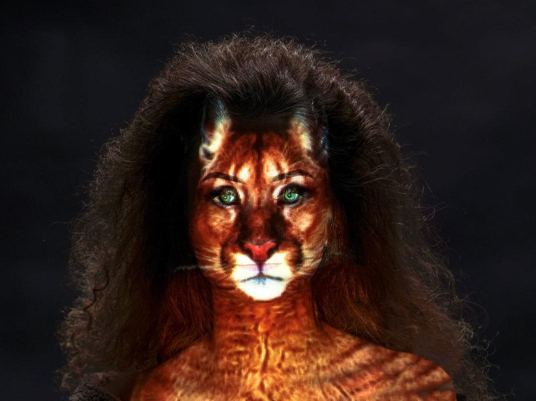 проект девушка-кошка - вадим