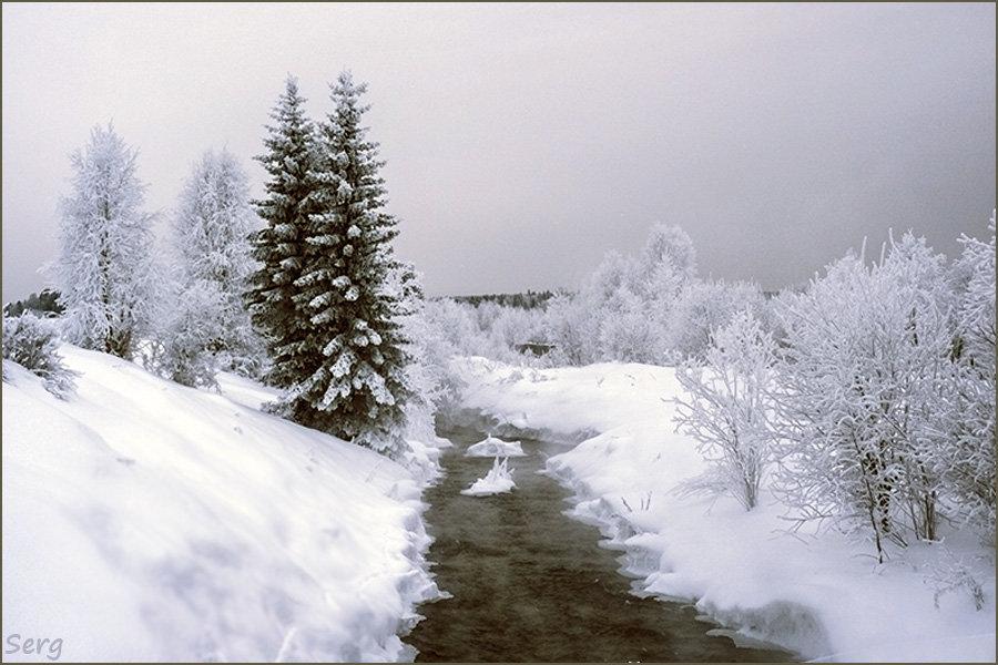 Зимний пасмурный день. - Сергей l