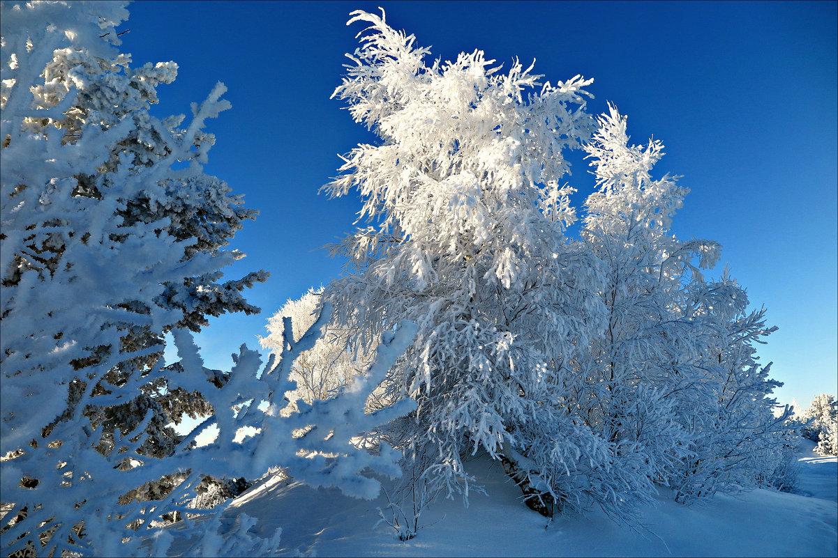 Морозный день - Leonid Rutov