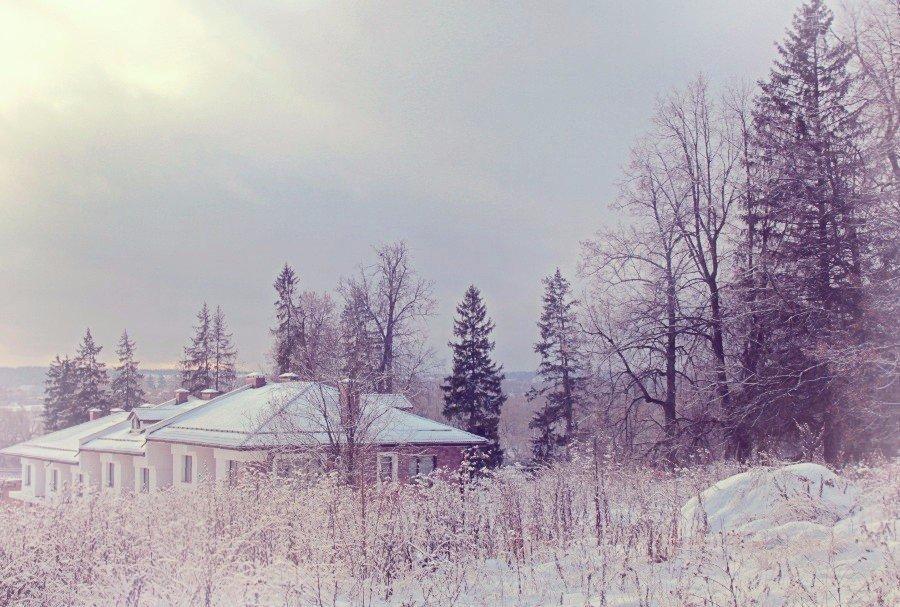 Зимний  денёк. - Наталья Соколова
