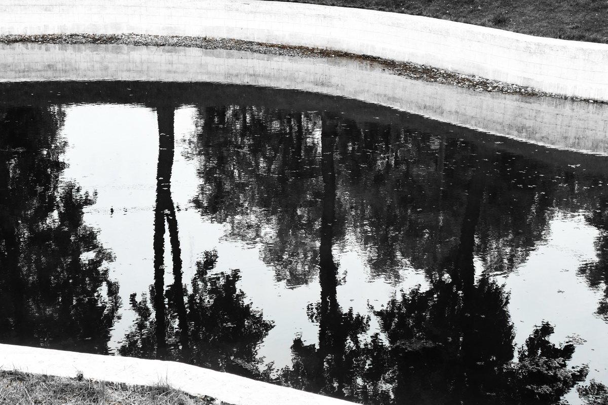 Отражение - Игорь