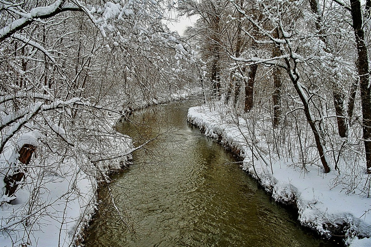 московский февральский пейзаж - megaden774