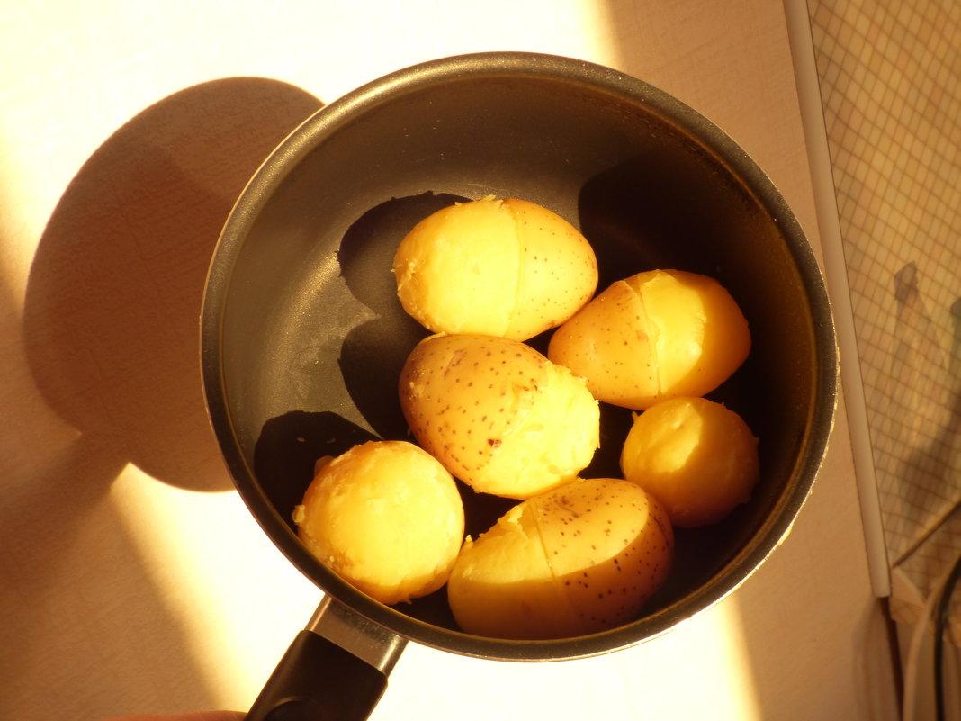 """""""Половину картошки почисть и свари!"""" -просьба жены. - Alexey YakovLev"""