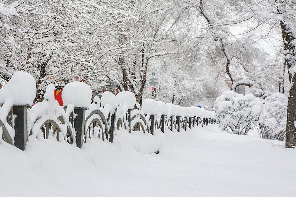 Снежный караул. - юрий Амосов