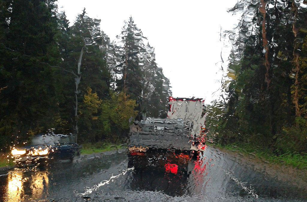 Экспрессия дождя - Валерий Нестеров