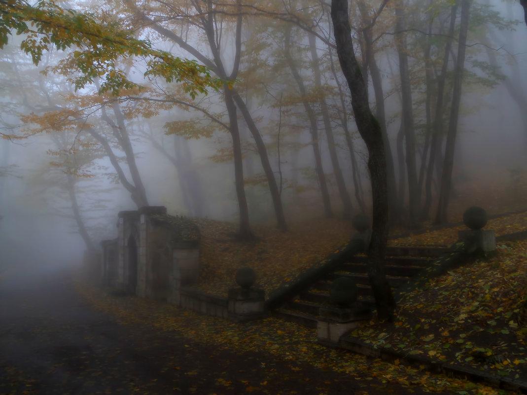 Старая лестница...... - Юрий Цыплятников