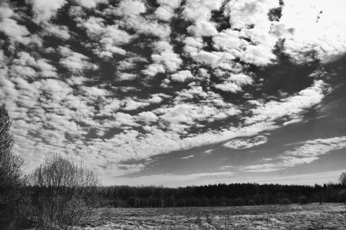 Облака - Екатерррина Полунина