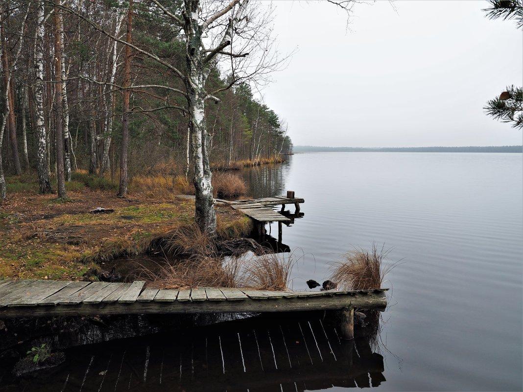 Берег лесного озера - Leonid Voropaev