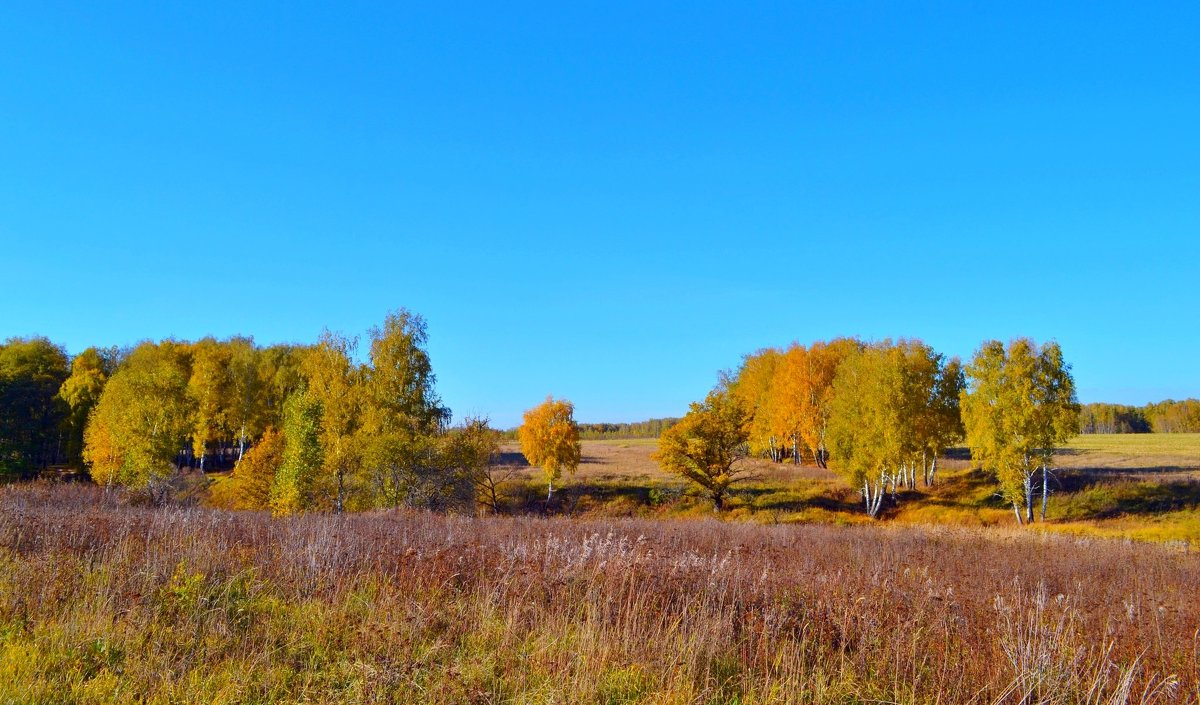 Русская осень - Геннадий