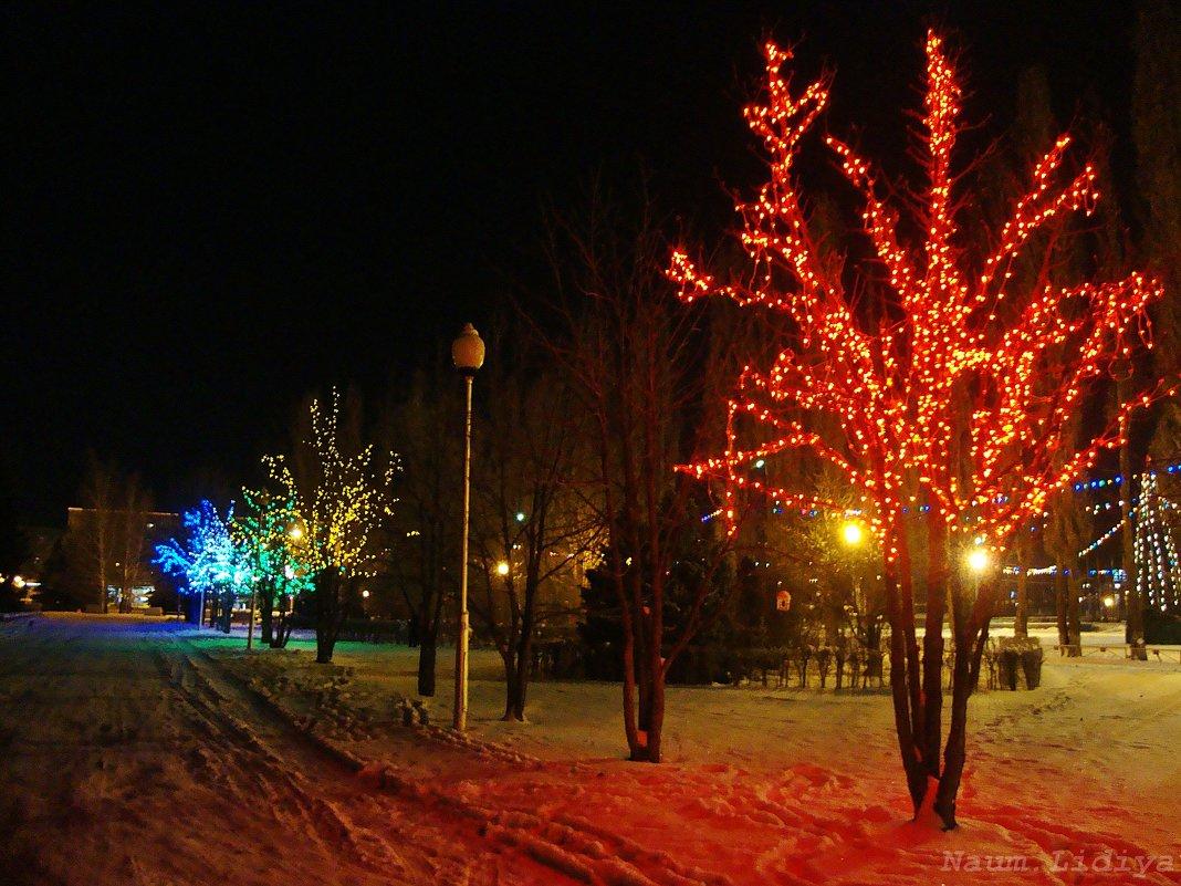 Вечером в парке - Лидия (naum.lidiya)
