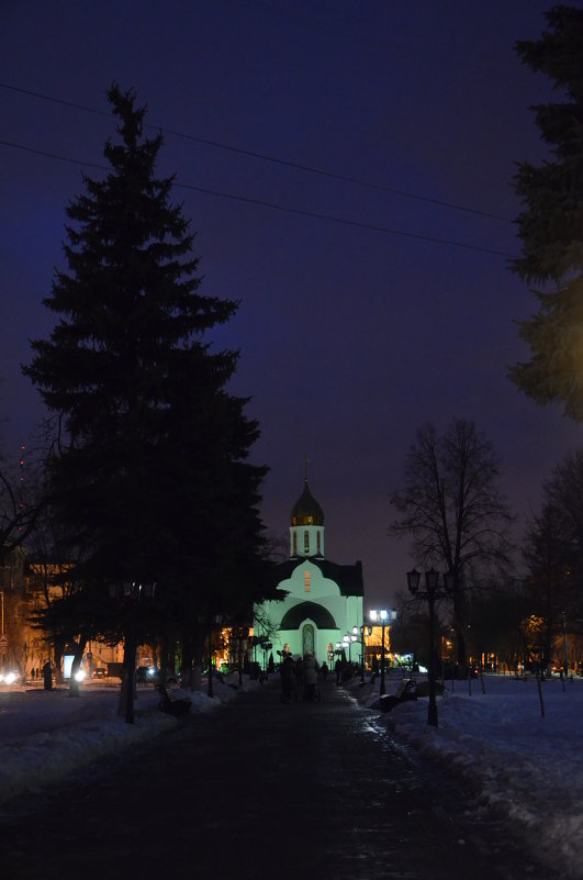 Зимний вечер - Ольга Беляева