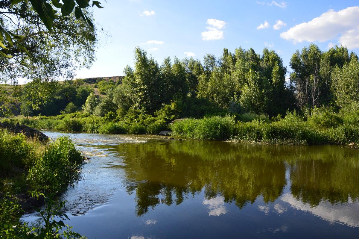 река Калетва. - Виктор