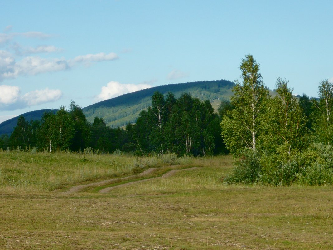 Пейзаж - Вера Щукина