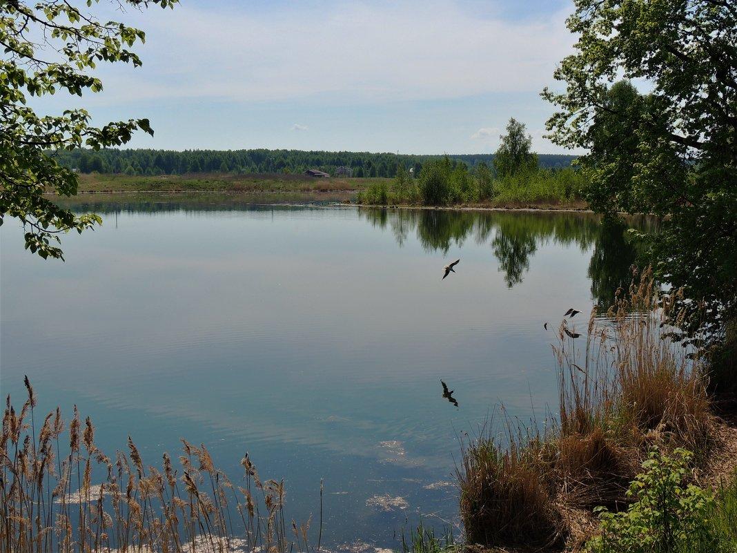 Ворсменское озеро - Вячеслав Маслов