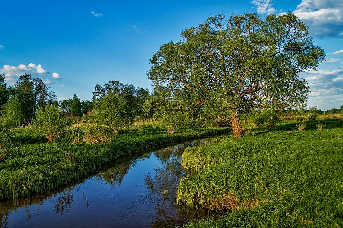 Майский вечер - Андрей Дворников