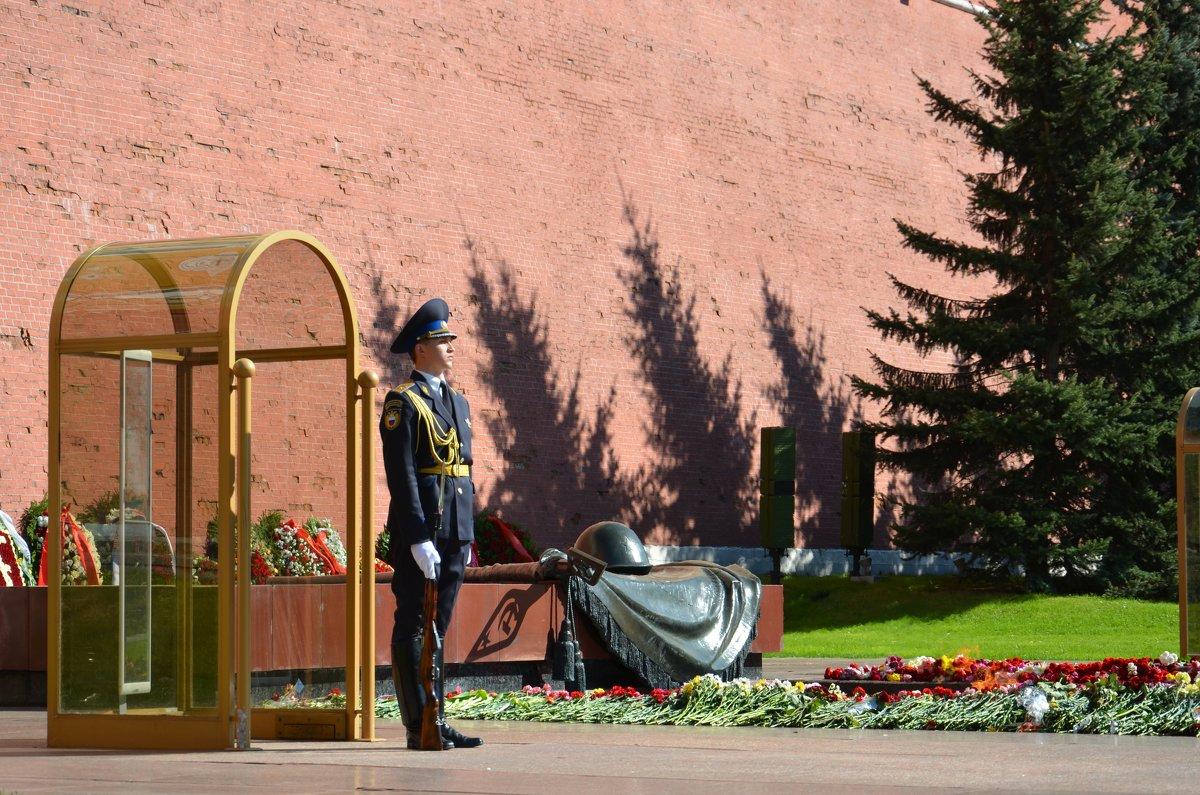 Москва - Ольга Соловьева