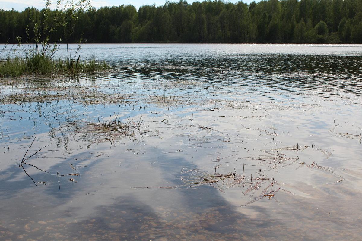 вода - Светлана Рябова