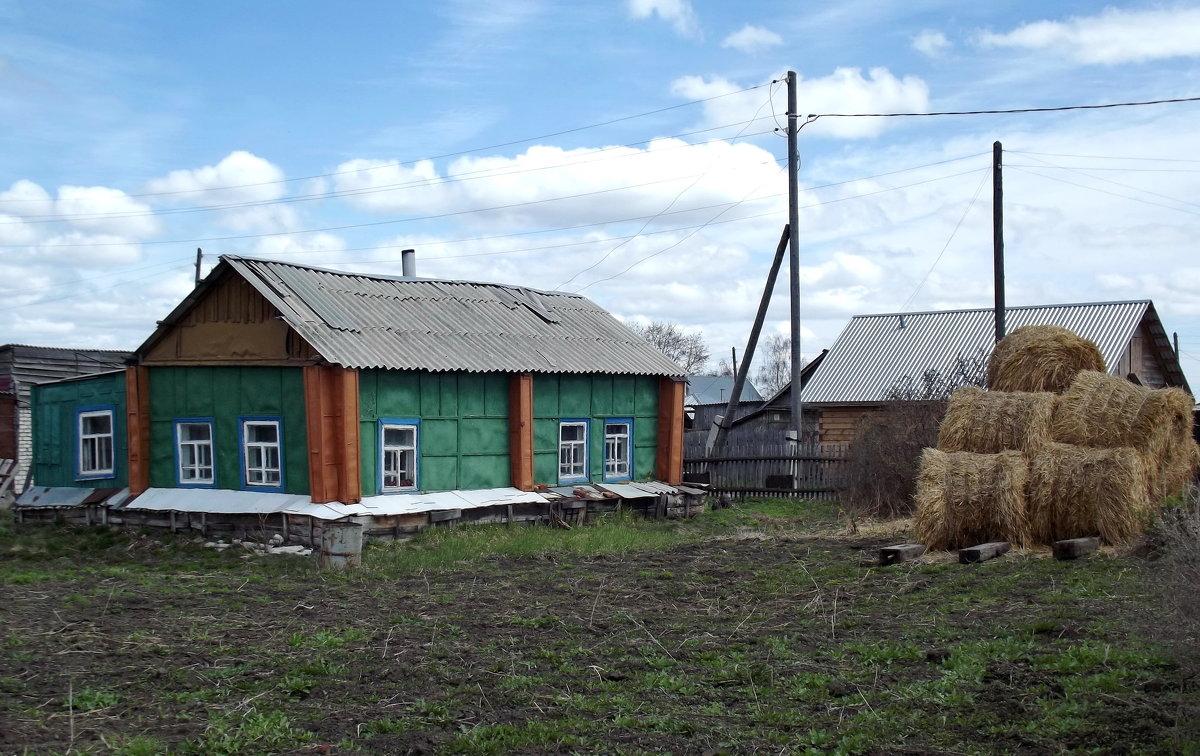 --- - Светлана Рябова-Шатунова