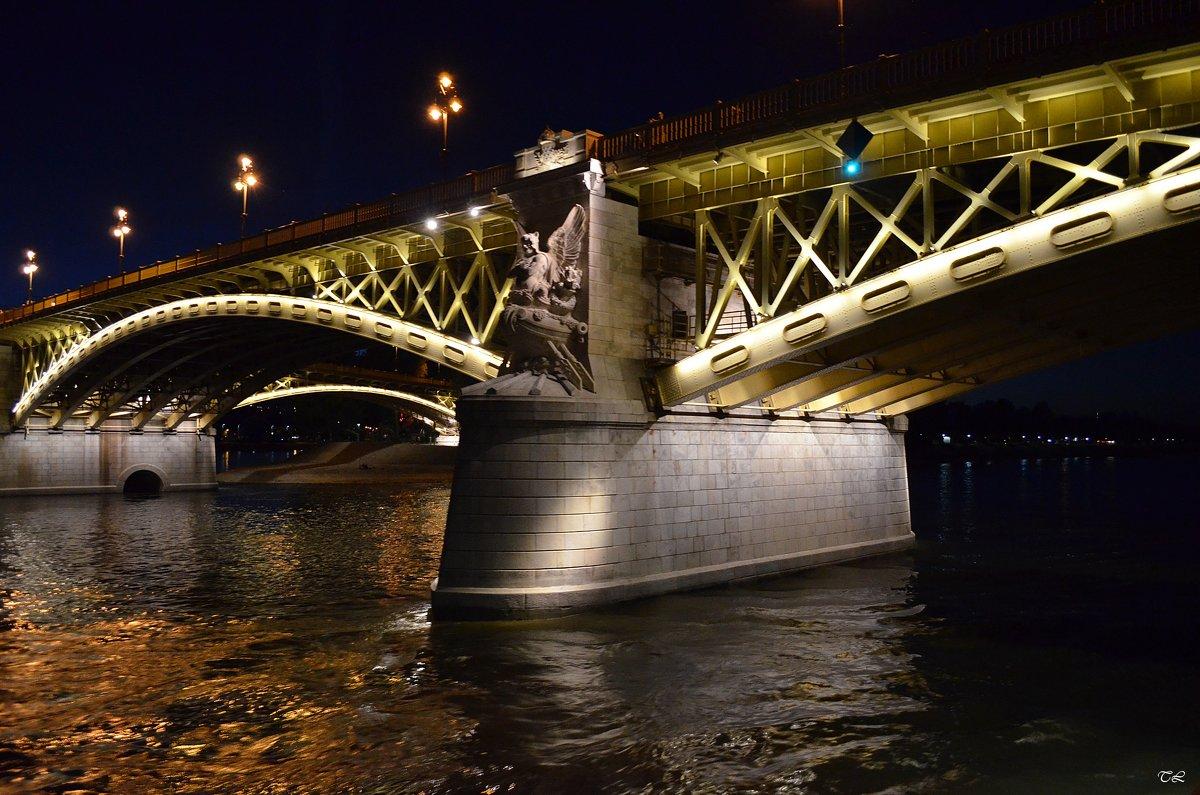 Будапешт. Мост Маргарет - Татьяна Ларионова